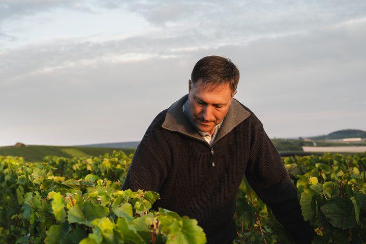 Visites et oenotourisme en Champagne - Legras & Haas